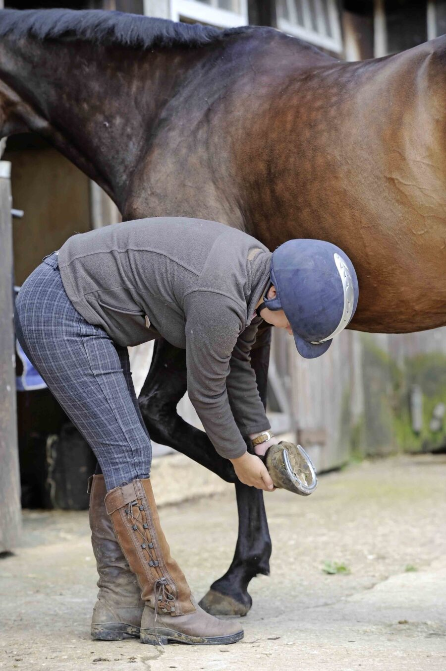 Care for His Hooves