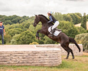 Lucinda Green: understanding how your horse sees a fence *video*