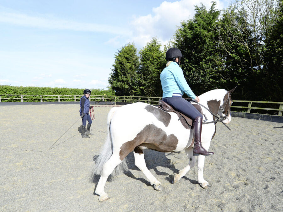 No stirrups: 3 on-the-lunge exercises that will help you achieve a more secure seat