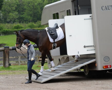 What to Look for When Buying a Second-hand Horsebox