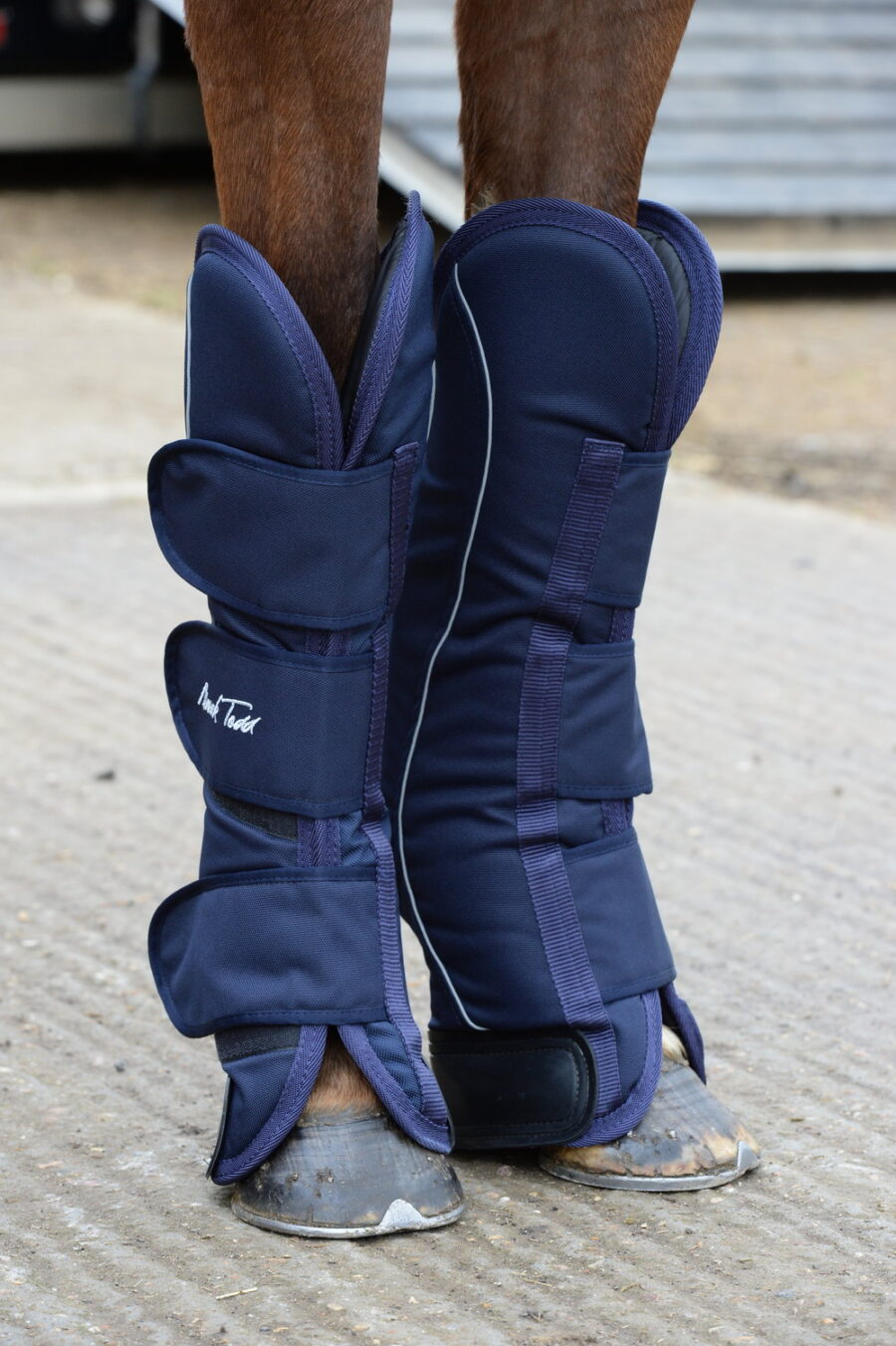 A Review of the Mark Todd Travel Boots