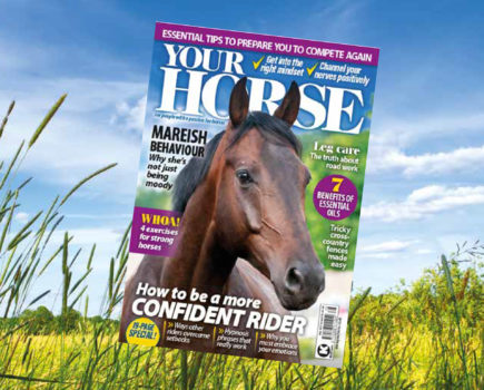 Confidence special: inside the May issue of Your Horse