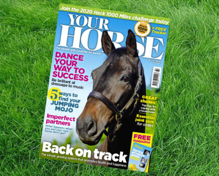 Inside the May Issue of Your Horse Magazine