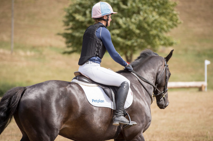'Like a seat belt': 8 reasons to always put a neck strap on your horse