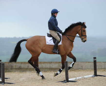 Watch: the Ultimate Guide to Paces – Canter
