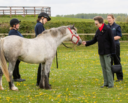 Princess Royal visits rescued horses and ponies at World Horse Welfare (video)