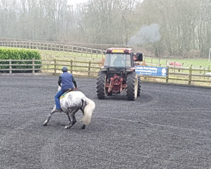 Helping Your Horse Cope, With Advice From Jason Webb