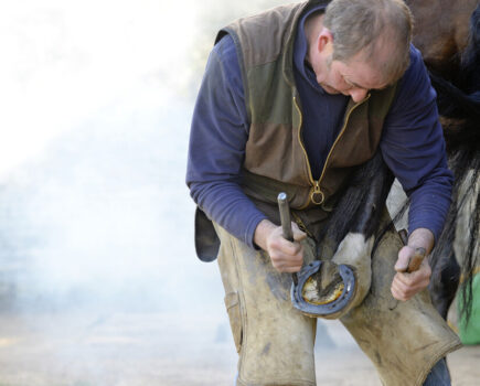 The Owner-farrier Relationship