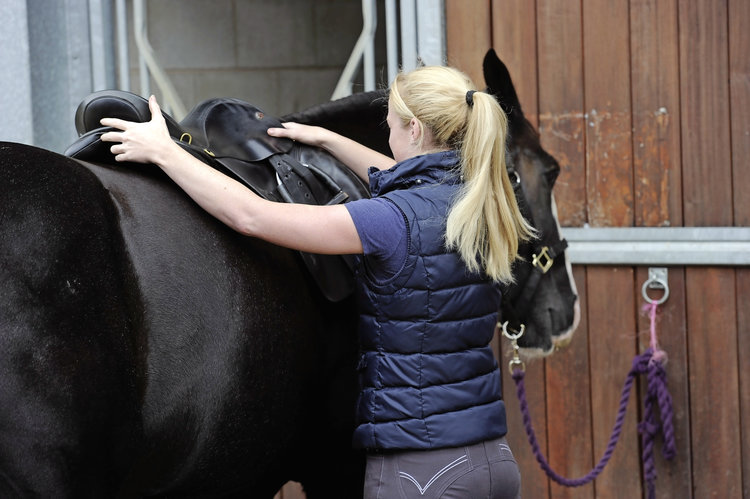 Dr Sue Dyson: an ill-fitting saddle could be making your horse lazy