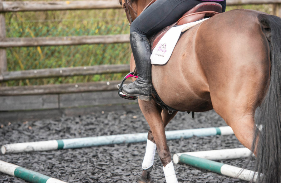 Alarming statistics show high number of riders are using saddles that don't fit them or their horse
