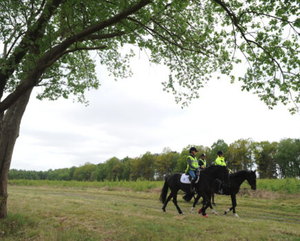 Take Action to Secure Further Off-road Access for Riders