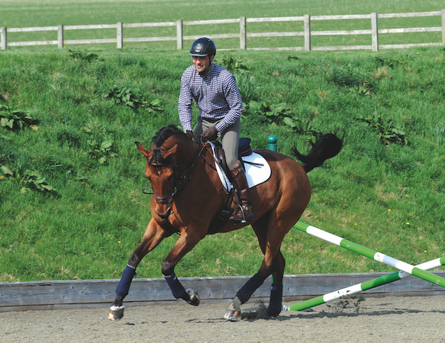 Fresh Horse? 3 Exercises to Get Him to Knuckle Down and Work