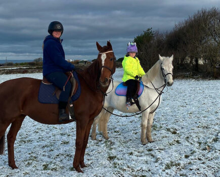 Ex-racer With 'increasingly Dangerous' Behaviour Enjoying New Life as a Leisure Horse