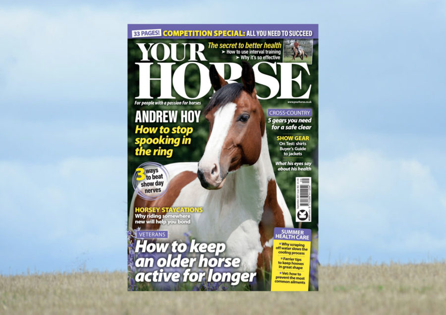 Inside the September issue of Your Horse: a competition special