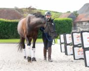 How to teach your horse to do shoulder-out from the ground