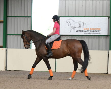 How to Ride a Walk Pirouette