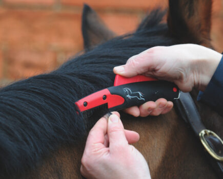 Seven Humane Mane Thinners Put to the Test