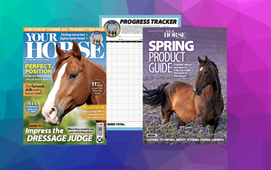 Inside the Spring Issue of Your Horse — Includes #hack1000miles Relaunch