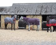 8 stable rugs to keep your horse warm and cosy this winter