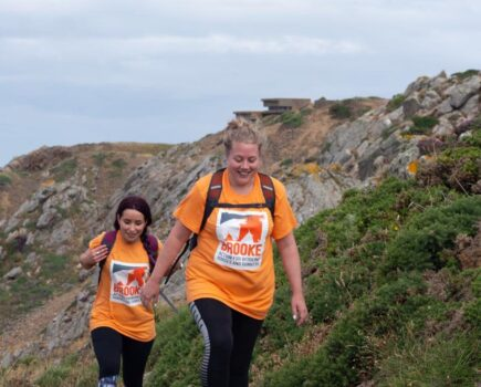 Step in Their Shoes: Join 100-mile Challenge for Working Horses, Donkeys and Mules