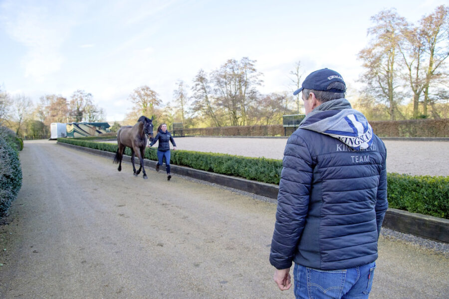 Pinpointing Lameness in Your Horse
