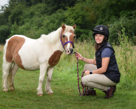 10 vet tips for keeping an older horse healthy and happy longer
