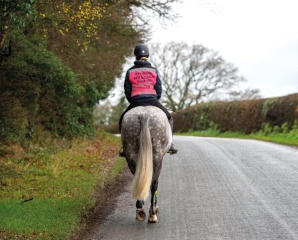 Feeling Frosty? Top Tips to Stay Warm When Hacking in Winter