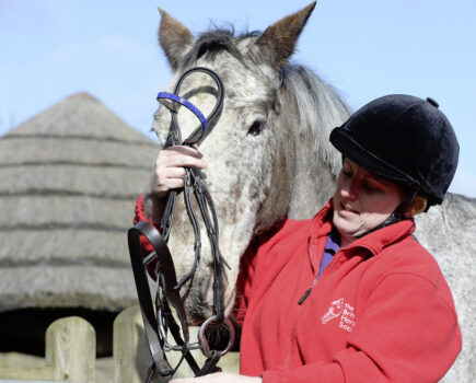 My Mare Is Fussy in the Mouth