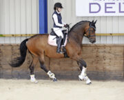 How to teach a horse to strike off on the correct leg in canter
