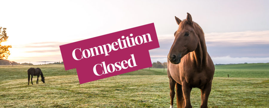 Win a riding outfit and supplements for your horse