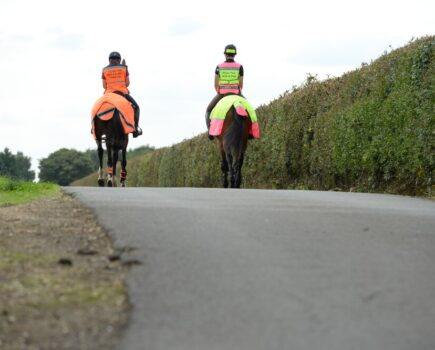 Be Seen and Safe: Hi-vis Gear Put to the Test