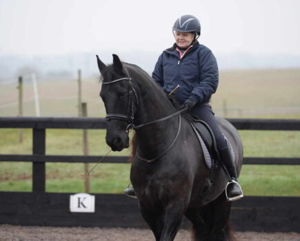 How Can I Feel Confident After a Bad Fall From My Horse?
