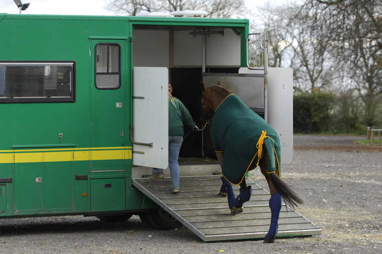 What Should I Do if My Horse's Lorry Breaks Down?