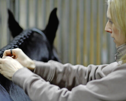 How to Make Your Horse's Plaits Perfect