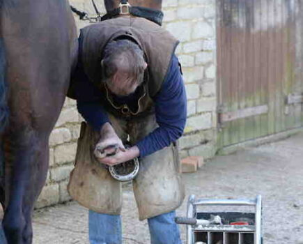 How Can I Help My Horse With His Fear of the Farrier?