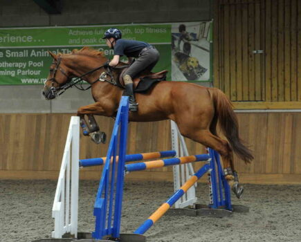 Tight Turns, Less Space and More Distractions – Five Tips for Jumping Indoors