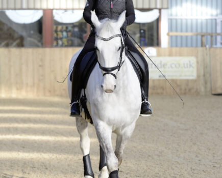 Essential Lateral Work to Improve Your Horse's Engagement