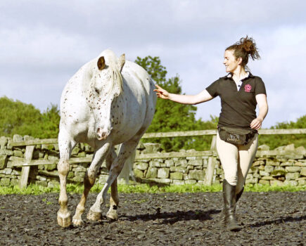 Three Key Steps to Improve Your Connection With Your Horse