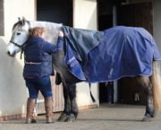 9 top tips for making your horse's rugs last longer