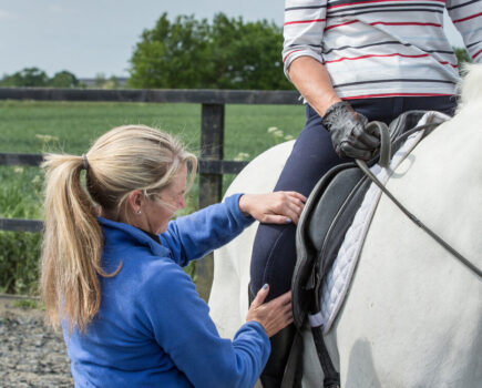 Tips for Sitting Trot Success