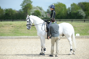 Correct Your Horse Riding Position in Walk