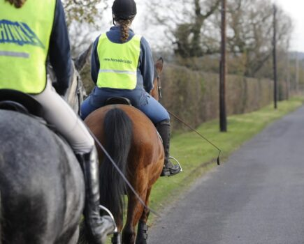 My Horse Spooked and Was Hit by a Reckless Driver – Who's Responsible?