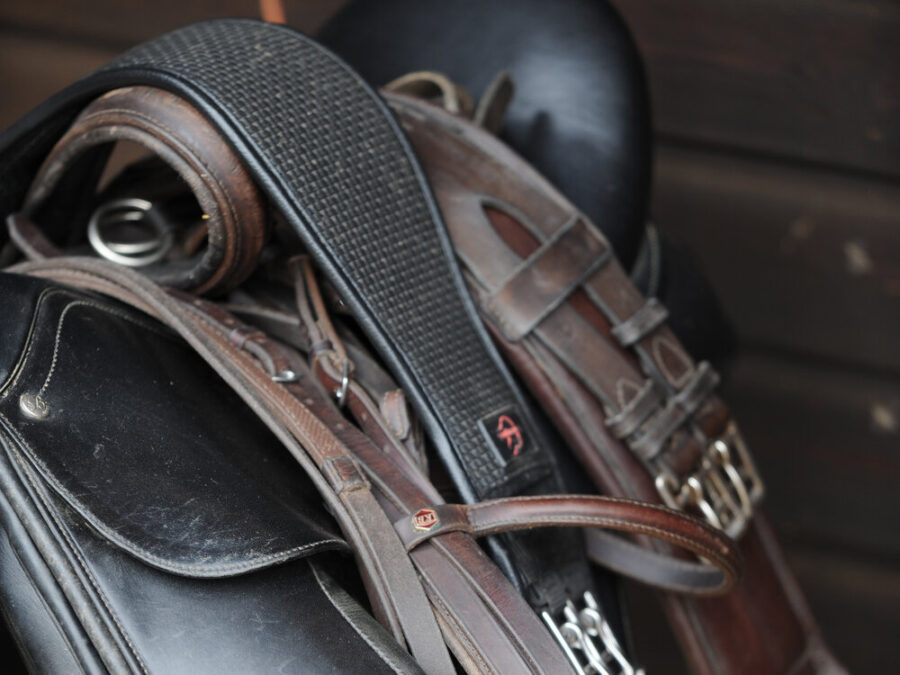 How Can I Be Sure I'm Not Buying a Stolen Saddle?