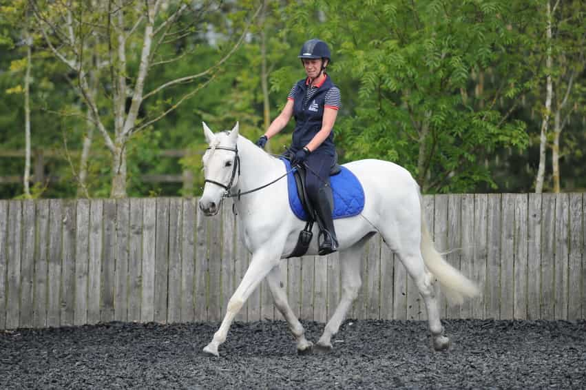 30-minute Workout to Improve Your Horse's Balance