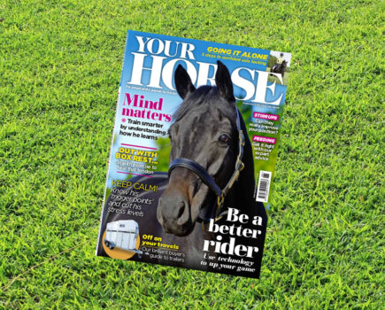 Inside the September Issue of Your Horse Magazine
